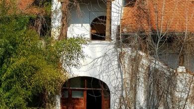 Photo of Răsturnare de situație la Ferma Florica! Un proprietar a cumpărat ilegal