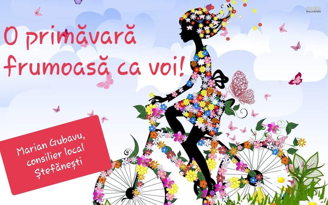 Felicitare Marian Gubavu, consilier local Ștefănești
